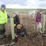 Tree Planting at Thornley Woods